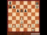 Уроки шахмат по скайпу в http://distance-teacher.ru/