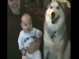 приколы с животными Дети и они